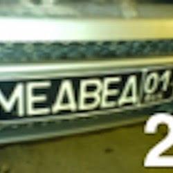 medved01ru2