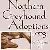northerngreyhounds