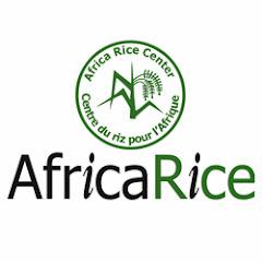 africaricecenter