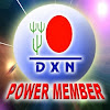 dxnpowermember