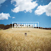 Dogcatcher Band
