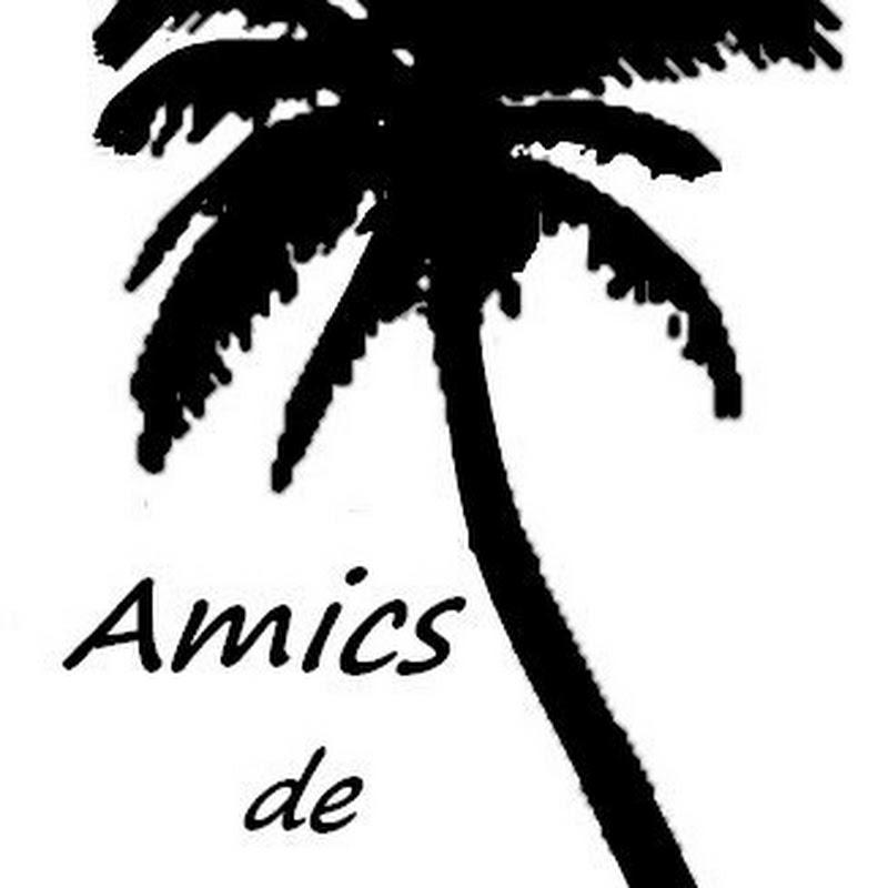 AA.VV. Amics de SArenal