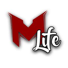MrLEV12 ́s LIFE