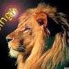 lionheartsingh1