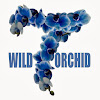 wild7orchid