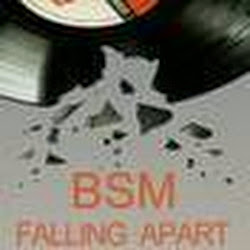 bsmproject