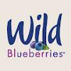 WildBlueberries4u