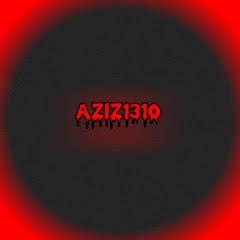 Aziz1310