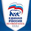 Кострома Единая Россия