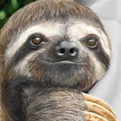 Sgt. Slothy