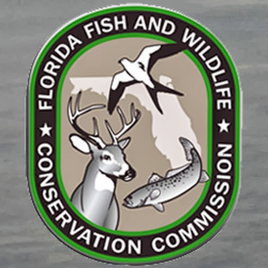 Florida fish and wildlife conservation commission fishing for Fish and wildlife