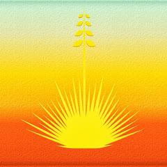 Landscaping Southwest Tv