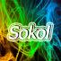 SokolGame