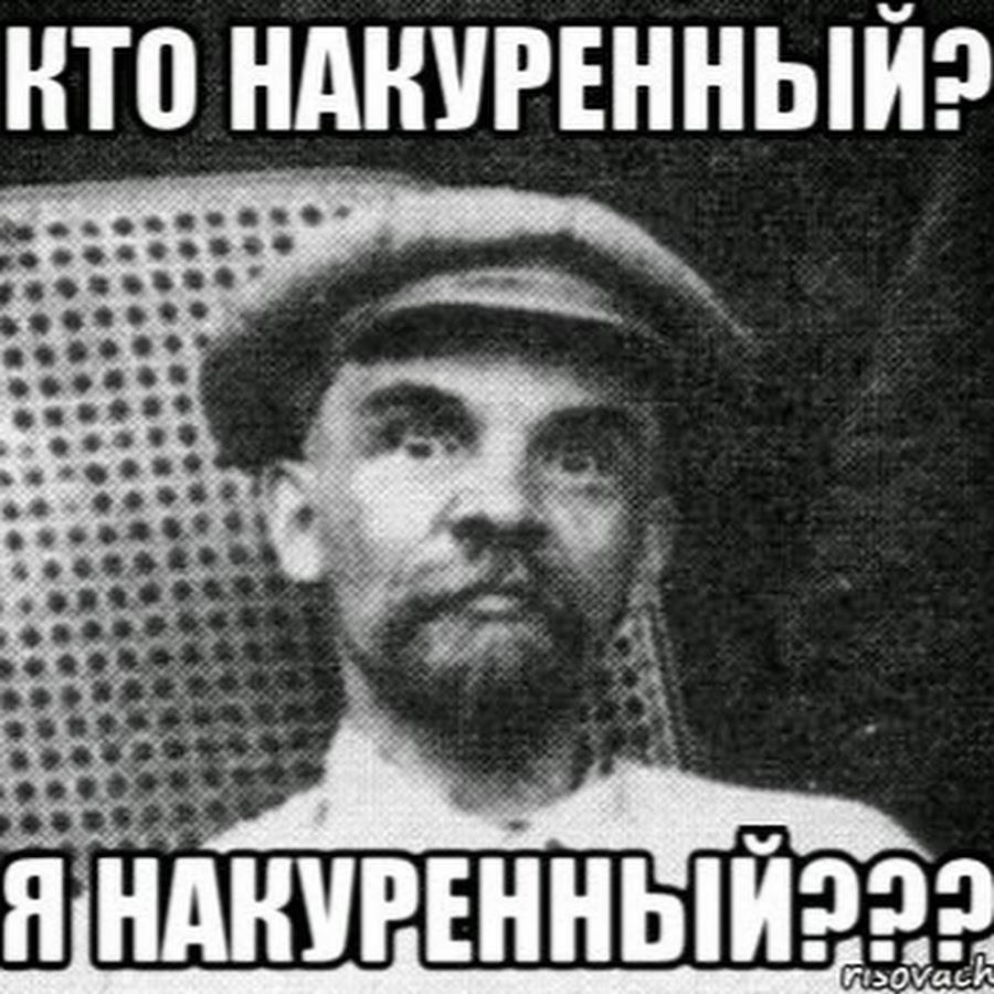 kak-viglyadit-suchka