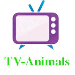 My Pets-Animals