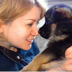Рейтинг youtube(ютюб) канала Немецкая Овчарка и все породы собак