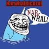 Narwhaleicorn