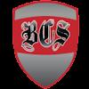 BCS BeezCombatSystems