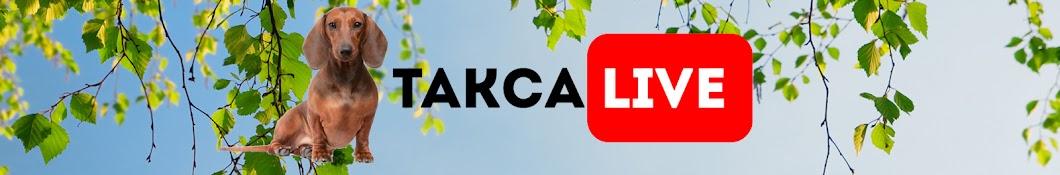 Taksa Live