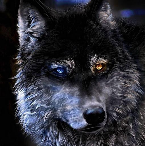 Ecki Wolf