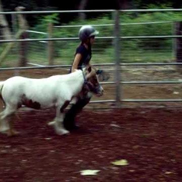 horselovre