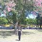 Letticia mallory, Brazil
