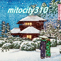 mitocity310