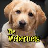 thewebernets