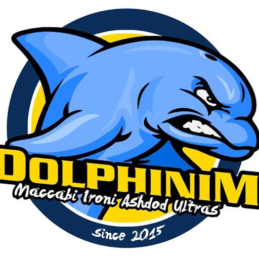 DolphinimTV