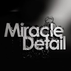 Miracle Detail by Paul Dalton