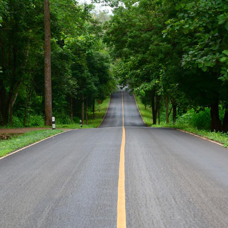 La Ruta Verde (larutaverde)