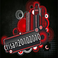 crisan20102010