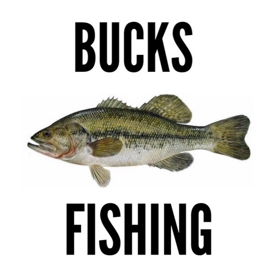 Bucks bass fishing youtube for Youtube bass fishing