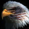 Lady Eagle 8