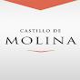 Castillo Molina