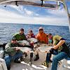 tofinofishing