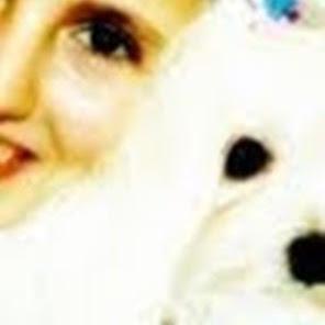 whitepuppywhite