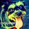 DVincentW
