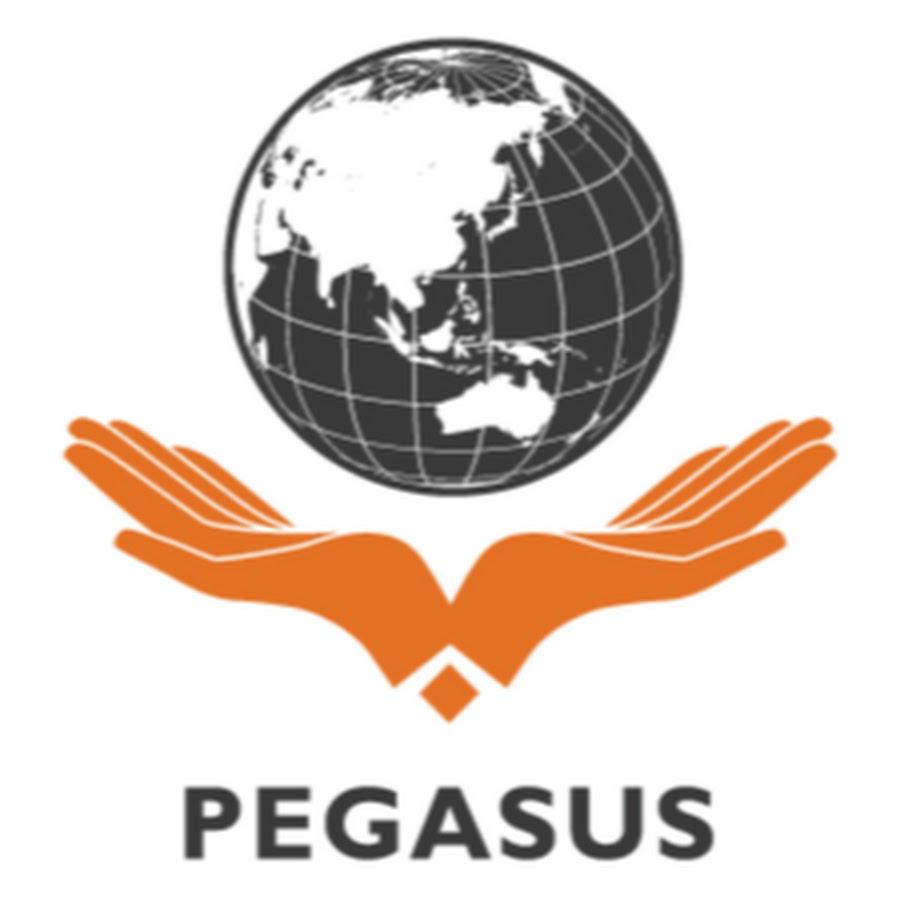 pegasus international marketing plan Marketing manaaemen 14e global edition philip kotler northwestern university sample marketing plan: pegasus sports international 82 part 2 capturing marketing.