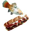 SwaggyFish