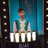 Elias Foghagen