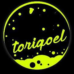 Cover Profil Toriqoel