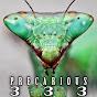 precarious333