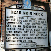 Bearskin Neck