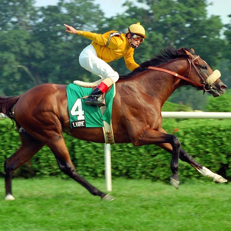 Horse Racing Youtube