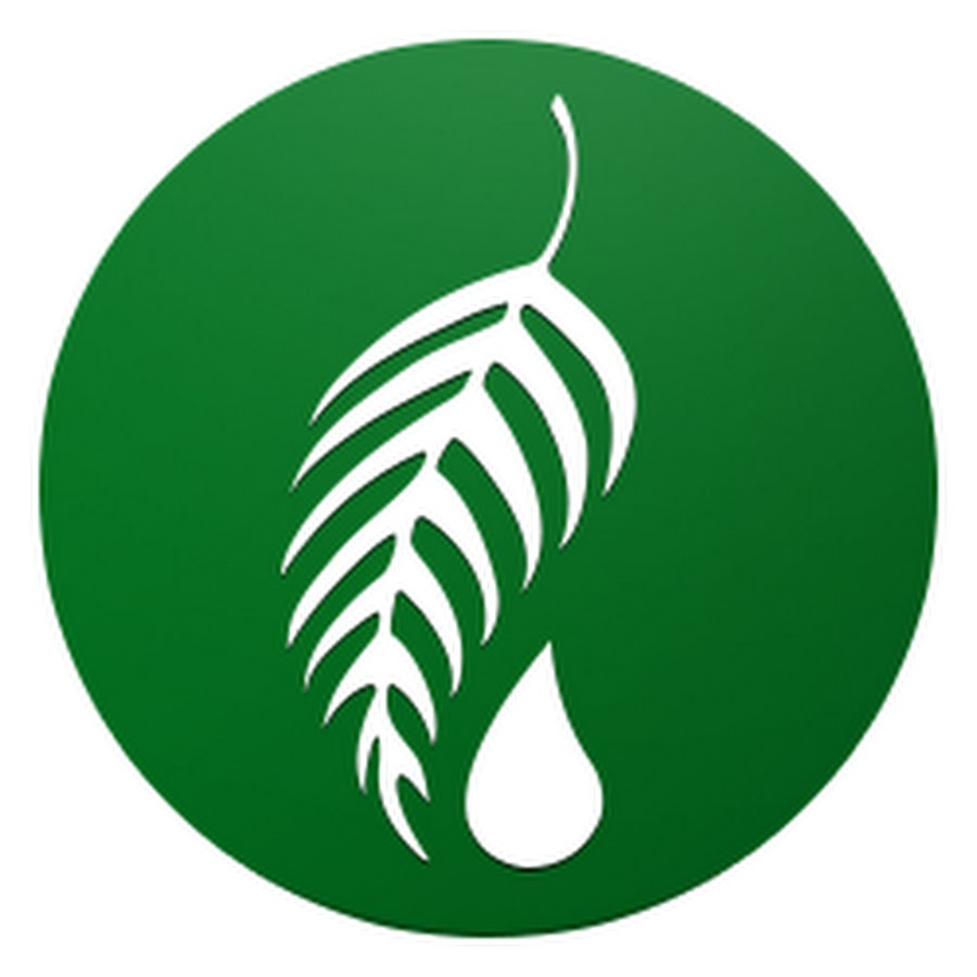 melaleuca youtube melaleuca logo download melaleuca logo wear