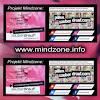 Projekt MINDZONE
