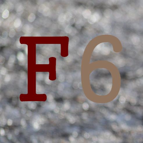 foolguy6