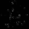 Ripcurlsurfcampaus