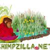 OfficialChimpzilla